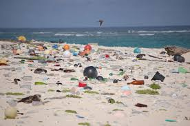 How Plastics Affect the Environment