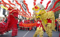 The Chinese Spring Festival is Coming Soon!